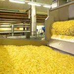 ایجاد صنایع تبدیلی سیب زمینی در حد حرف باقی مانده است